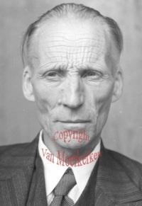 L. E. J. Brouwer (1881-1966)